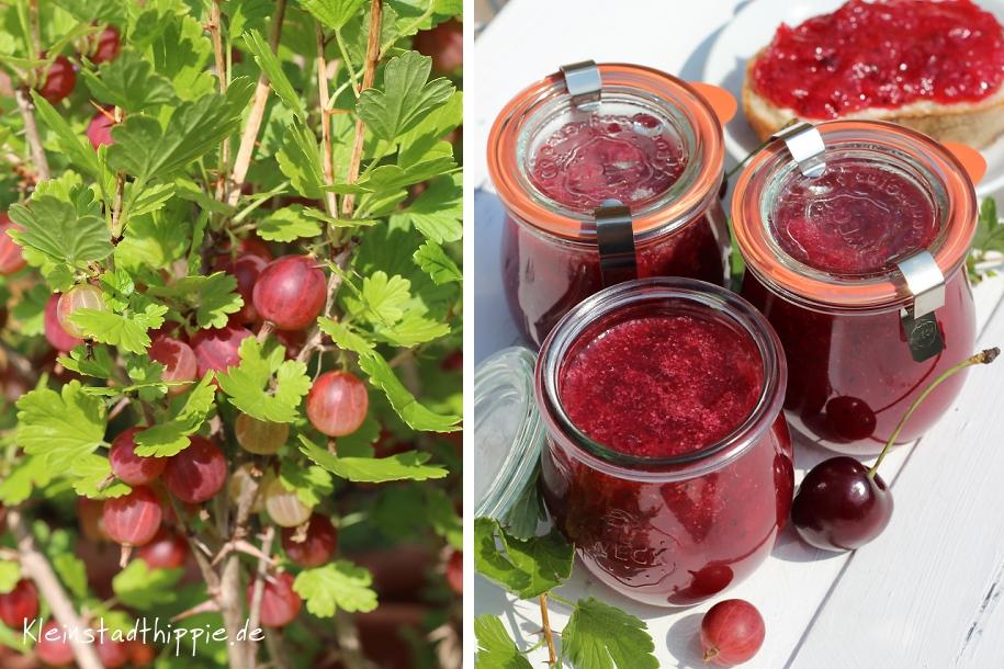 Marmelade aus Kirschen und Stachelbeeren
