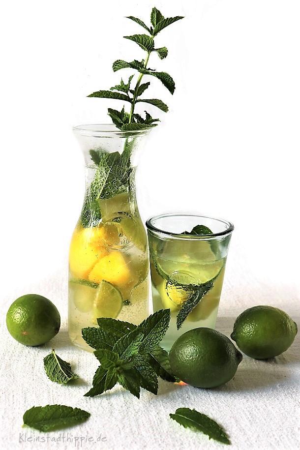 Selbst gemachte Limo - erfrischend und lecker und vegan