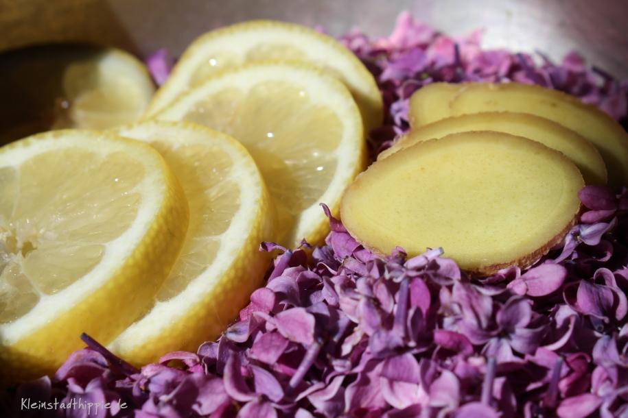 Fliedersirup - Fliedersirup selbst machen - selber Sirup machen - Rezept
