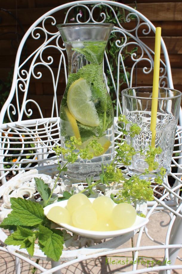 Auch Zitronenscheiben kann man primaeinfrieren. Tipp von Kleinstadthippie vegan Food Blog