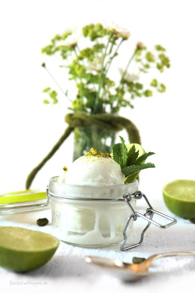 Kokos-Limetten-Eis - vegan - laktofefrei - lecker - sahnig - cremig von Kleinstadthippie.de