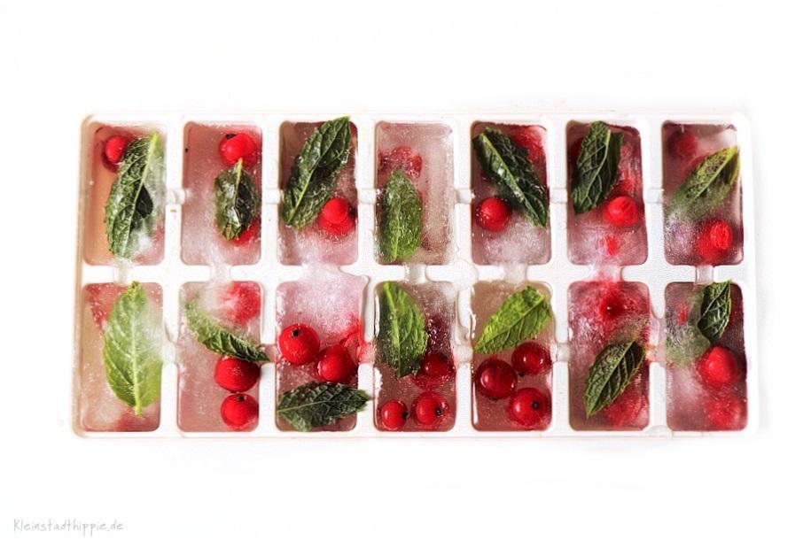 Eiswürfel mit Früchten und Minze