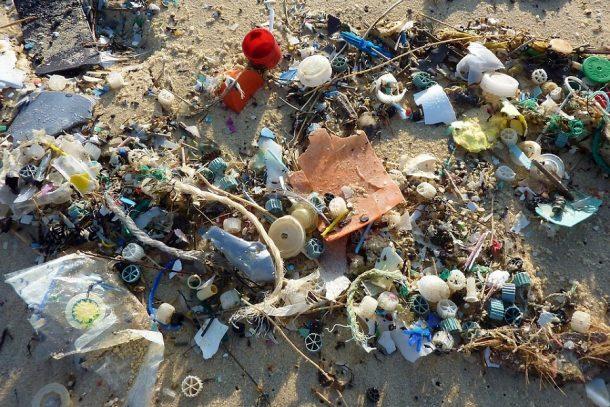 Plastikfrei einkaufen - Plastik zerstört unsere Umwelt